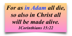 For as in Adam all die, so also in Christ all will be made alive 1 Corinthians 15:22