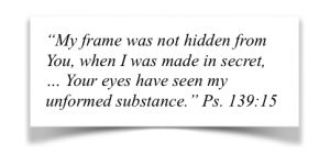 My frame was not hidden from you, when I was made in secret ... Your eyes have seen my unformed substance. Psalm 139:15