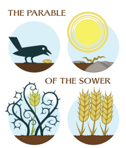 graphic depicting a bird eating seed, the sun scorching seed, brambles crowding out the seed, and seed flourishing as a plant
