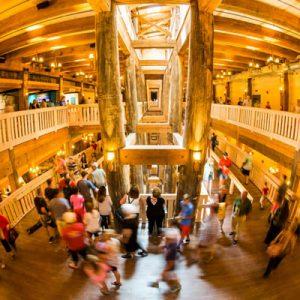 Steeling Noah's Ark 2017