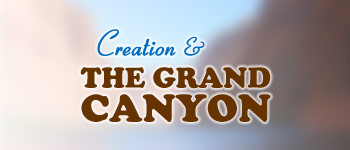 Footer Grand Canyon Preview Logo